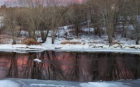 В пруду под Липецком утонули двое детей