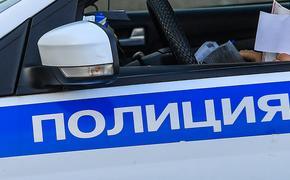 Тело женщины со следами собачьих укусов обнаружено во дворе дома в Красноярске