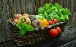 Ученые из Германии рассказали о лучшей диете для профилактики рака