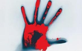 Подросток может остаться безнаказанным. Видавшие виды полицейские в шоке от жестокости парня, совершившего двойное убийство