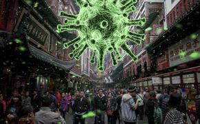 Коронавирус 24 февраля: критическая стадия борьбы с инфекцией и правда об украинских «вирусологах»
