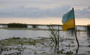 На украинском телешоу политики поспорили из-за русского языка