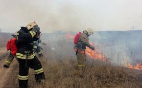 На юге России из-за резкого потепления стала гореть трава