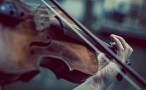 В Псковскую музыкальную школу закупили стулья по 100 тысяч рублей за штуку