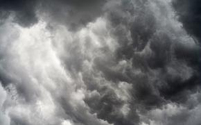 Сорвало крышу: в Симферополе кровля повредила десяток автомобилей
