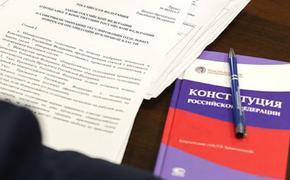 Общероссийское голосование по поправкам обещают сделать максимально доступным и удобным