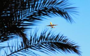 Мишустина попросили о возобновлении полетов в Египет