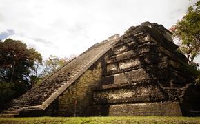 На заднем дворе фермы в Мексике обнаружили предполагаемую столицу королевства майя