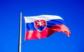 Новый министр обороны Словакии не хочет «создавать ад» в отношениях с Россией