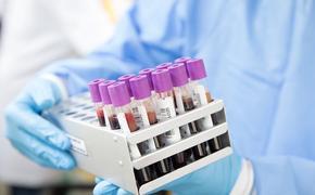 В России за сутки коронавирусом заразились 228 человек