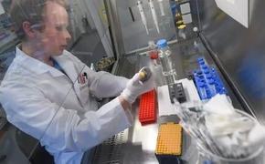 Открыта VIP-лаборатория или где сдают тесты на коронавирус олигархи и высокопоставленные чиновники