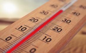 Ученые назвали температуру, при которой активизируется коронавирус