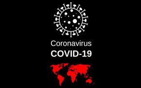 В настоящее время число заразившихся коронавирусом в Индии превысило 1 тыс. чеповек