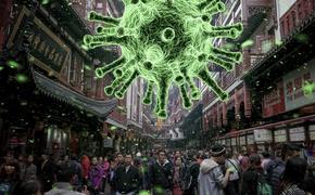 В Китае рассказали, когда эпидемия коронавируса пойдет на спад
