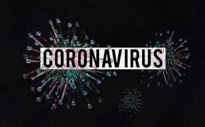 Стало известно, что в больнице в Коммунарке за сутки умерли два пациента, зараженные COVID-19