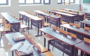 Глава Минпросвещения рассказал, продлят ли учебный год на лето