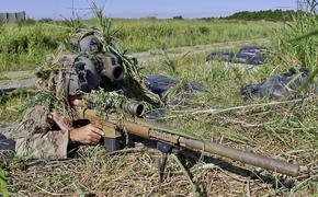 Снайпер ополчения уничтожил украинского военного в зоне конфликта в Донбассе