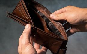 Минэкономразвития РФ предлагает сделать банкротство бесплатным и упрощенным