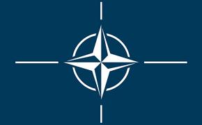 В НАТО оценили помощь России другим странам по коронавирусу