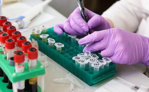 В России за сутки выявили еще 440 случаев коронавируса