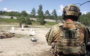 «Россия-24» поведала об организации сотрудниками СБУ «сафари» на ополченцев ДНР