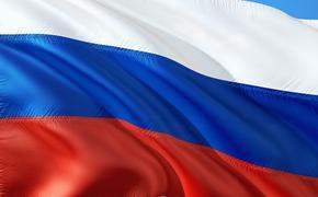 Политолог назвал причину «болезненной реакции» западных стран на российскую помощь США и Италии