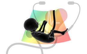 Суррогатное материнство может уйти в прошлое, весь цикл беременности обеспечит искусственная матка
