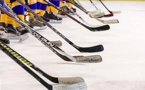 Опрос игроков НХЛ: в чём Овечкин и Панарин стали лучшими