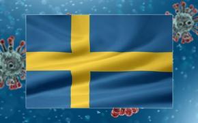 Коронавирус в Швеции: жизнь бьет ключом