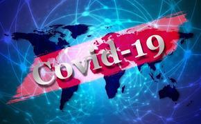 В Грузии зафиксирован первый случай смерти от коронавируса