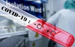 Три новых случая заражения коронавирусом выявили в Челябинской области