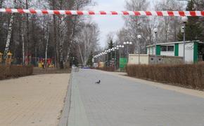 Воробьёв  сообщил: в Подмосковье еще у 80 человек подозрение на коронавирус