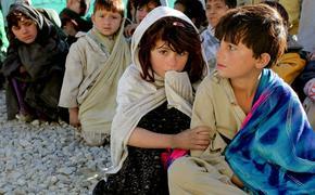 В России увеличивается число беспризорных детей