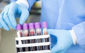 В США коронавирусом заразились более 362 тысяч человек