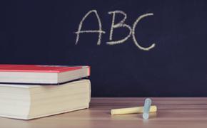 В Ассоциации родительских комитетов оценили предложение отменить ЕГЭ в 2020 году
