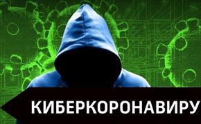 В России появились мошенники, наживающиеся на теме коронавируса