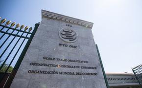 В ВТО назвали сроки восстановления мировой торговли