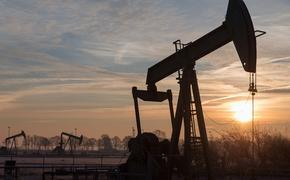 Экс-депутат Верховной Рады поведал о заработке Коломойского на российской нефти