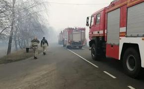 В Киеве почуяли запах чернобыльской гари