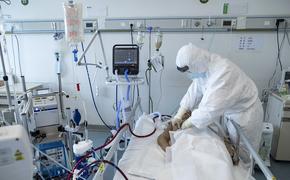 Выложено предсказание экстрасенса о сроке окончания пандемии коронавируса COVID-19