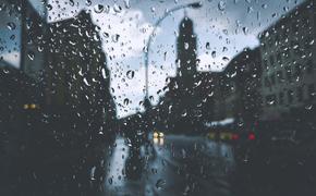 Предстоящий четверг станет самым дождливым днем апреля в Москве