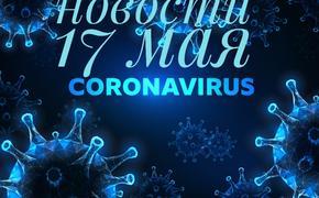 Коронавирус 17 мая: антитело, которое выводит вирус, вакцина и новый порядок выплат медикам