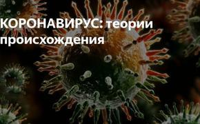 Так кто же создал вирус: природа или люди?