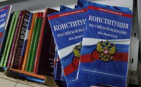 Удальцов предположил, когда может пройти голосование по Конституции