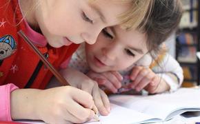 Новый способ мошенничества с детскими пособиями появился в России