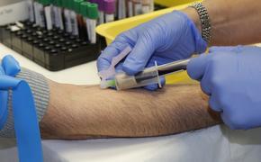 Журналист рассказал, как проходит тестирование на антитела