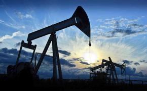 Добычу нефти предлагают сокращать и дальше, но торговать ею из запасов не запрещено