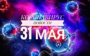 Коронавирус 31 мая: новые штрафы для россиян и прогулки по графику