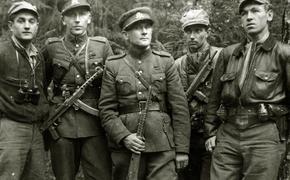Полковник КГБ ЛССР в отставке: Лесные братья в Балтии – сложнейший вопрос