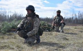 Аналитик предсказал победу армии РФ над ВСУ без единого выстрела в случае войны
